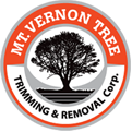MT Vernon Tree Company | Tree Removal